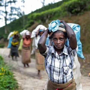Progetto fotografico le madri di Ceylon di Francesca Guarnaschelli sacchi